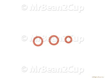 Picture of Gaggia Saeco Boiler Valve And Piston Gasket Kit (Gaggia Titanium etc)