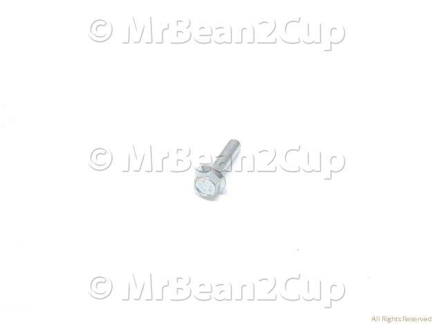 Picture of Gran Gaggia Galvanized Screw with Washer TE M5x20
