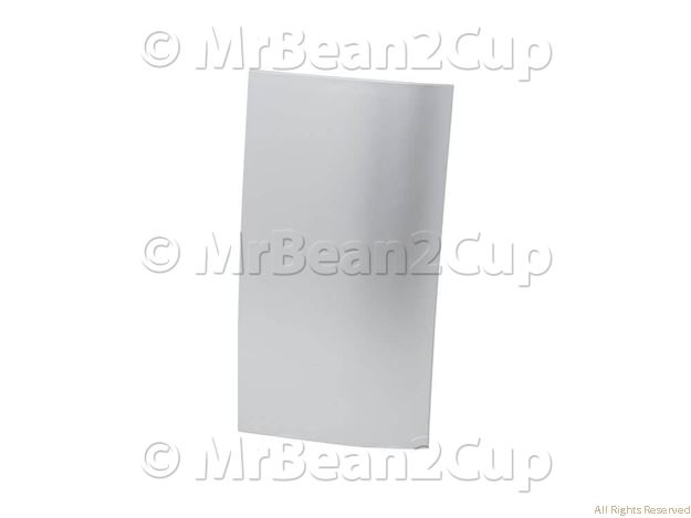 Picture of Gaggia Saeco Silver Water Tank Front Cover NPR